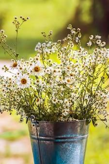 Bukiet kwiatów stokrotki-rumianku w metalowej doniczce w letnim ogrodzie.