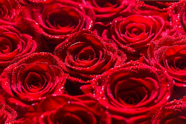 Bukiet kwiatów, świeża czerwona róża. kolaż czerwonych róż.