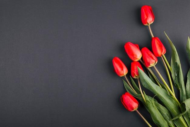 Bukiet kwiatów tulipanów