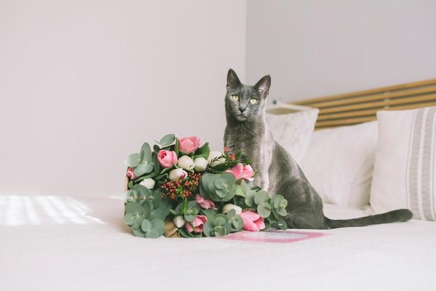 Bukiet kwiatów z szarym kotem na łóżku