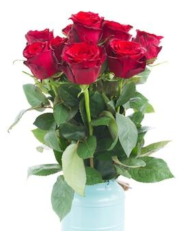Bukiet kwitnących czerwonych kwiatów róży na białym tle