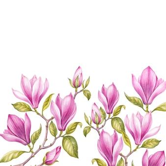 Bukiet magnolii.