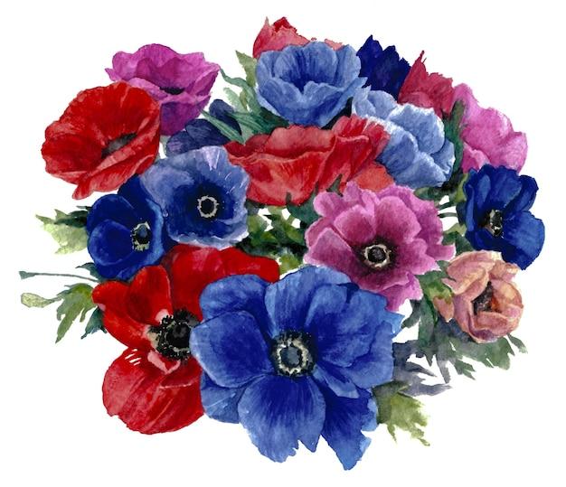 Bukiet niebieskich, czerwonych i różowych zawilców na białym tle. malarstwo akwarelowe.