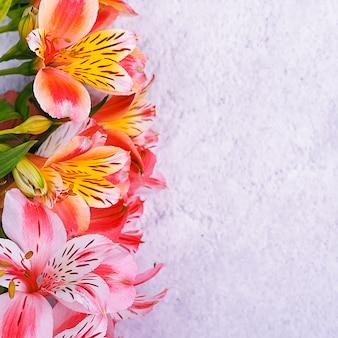 Bukiet orchidei jest piękny, świeży, jaskrawoczerwony i żółty na jasnym tle.