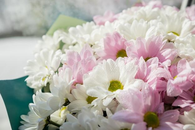 Bukiet pięknych chryzantem. tapeta różnych kwiatów chryzantem.