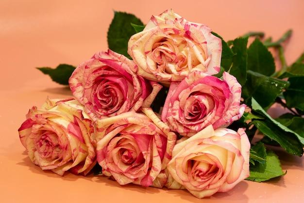 Bukiet pięknych różowych róż na różowym tle z bliska