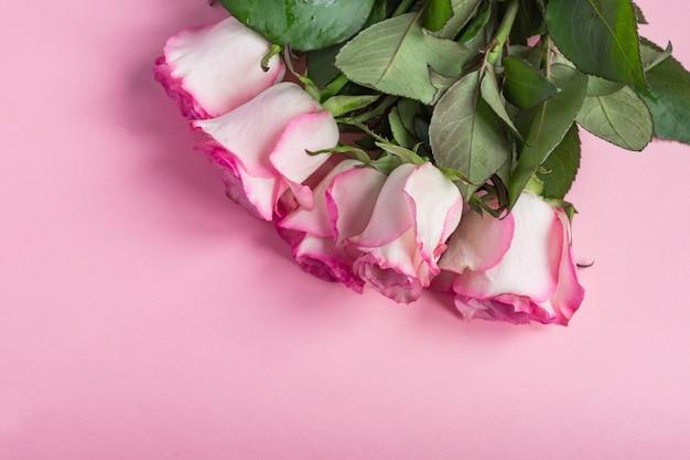 Bukiet róż kwitnących róż na pastelowym różu