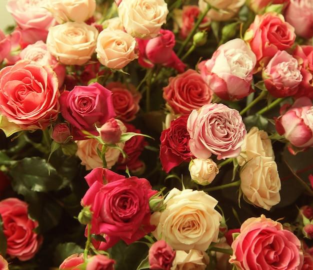 Bukiet róż wielokolorowych