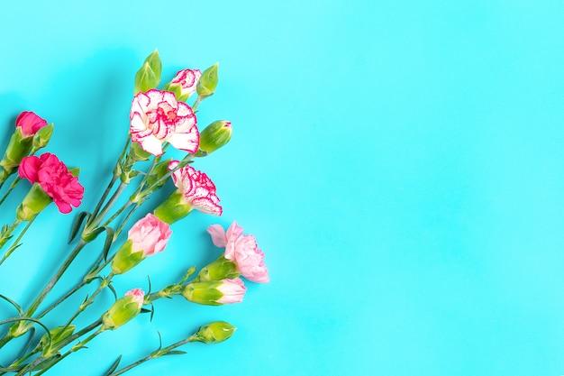 Bukiet różnych różowych kwiatów goździków na niebieskim tle widok z góry mieszkanie leżało