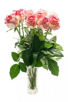 Bukiet różowa róża kwitnie na białym tle