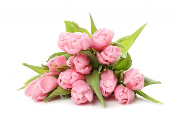 Bukiet różowi tulipany odizolowywający na bielu