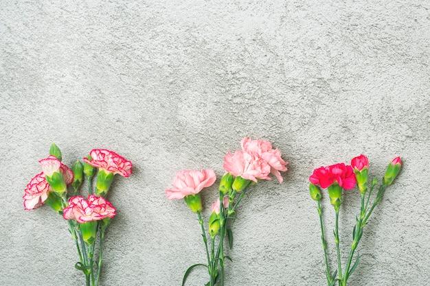 Bukiet różowy kwiat goździka na szarym tle betonu widok z góry mieszkanie leżał