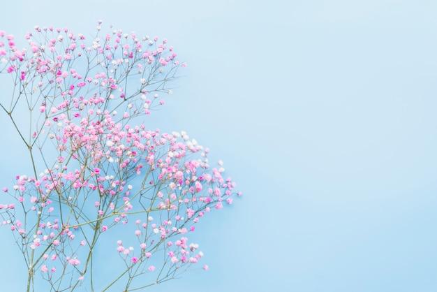 Bukiet różowych gałązek kwiatów