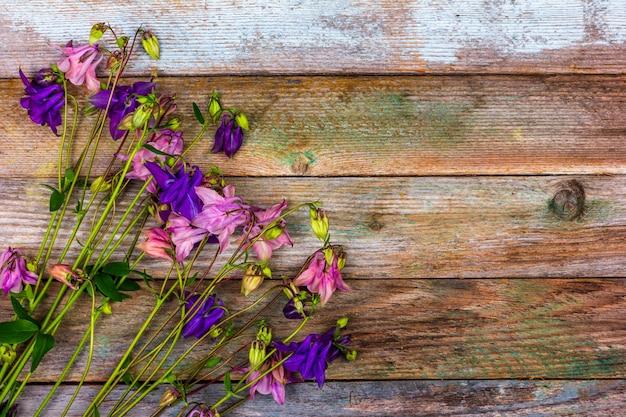 Bukiet różowych i niebieskich kwiatów orlików na drewnianym tle retro z widokiem z góry na miejsce na kopię