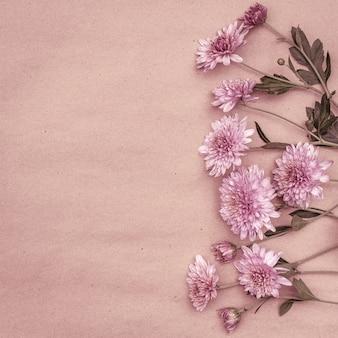 Bukiet różowych kwiatów chryzantemy na pastelowym tle