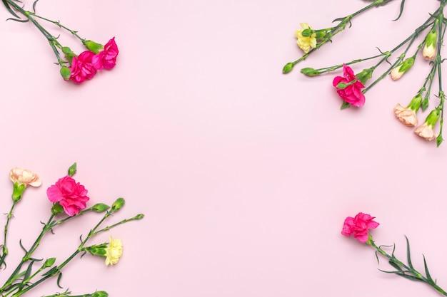 Bukiet różowych kwiatów goździków na białym tle na różowym tle widok z góry płaski lay
