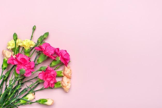 Bukiet różowych kwiatów goździków na różowym tle