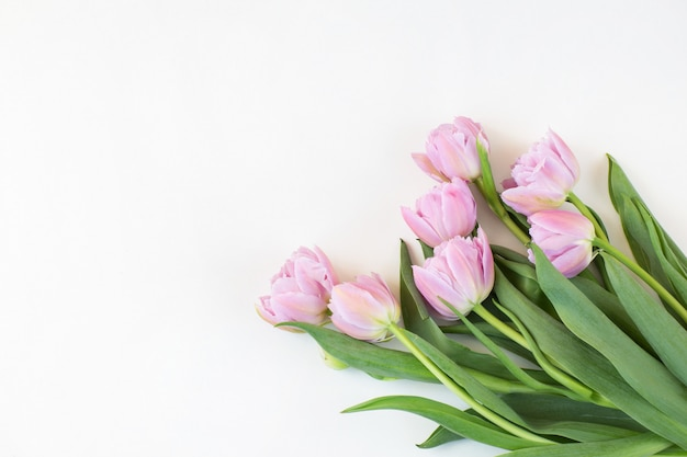 Bukiet różowych tulipanów i wolne miejsce na tekst