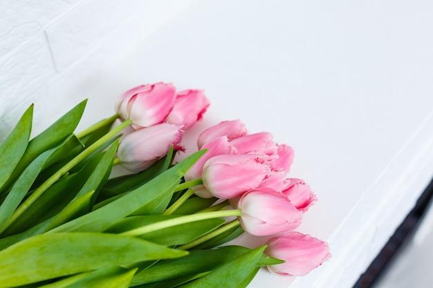 Bukiet różowych tulipanów na białym tle