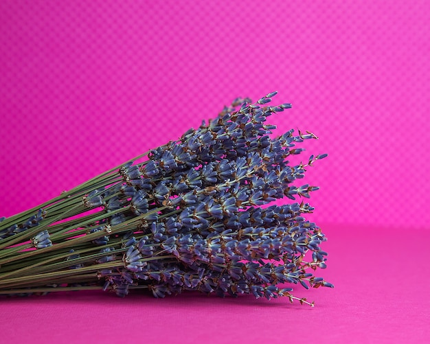 Bukiet suszonej lawendy niebieskiej na różowym tle widok z przodu
