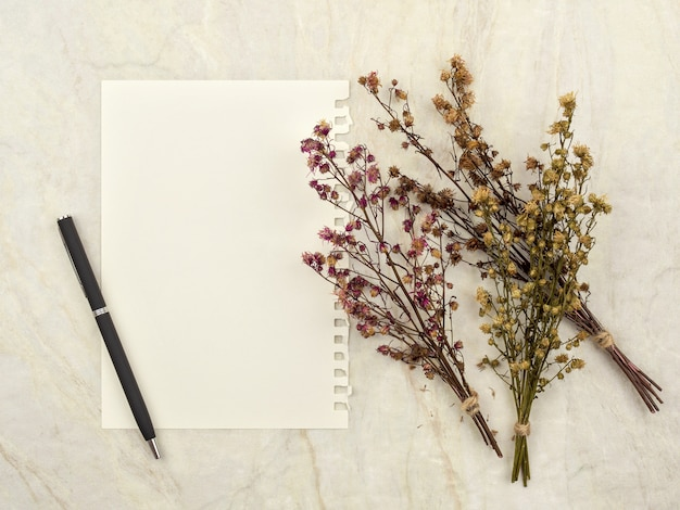 Bukiet suszonych łyszczec kwiatów do dekoracji