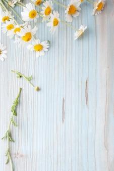 Bukiet świeżo ukradziony rumianek kwitnie na drewnianym tle