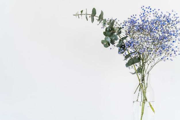 Bukiet świeżych gałązek i roślin w wazonie