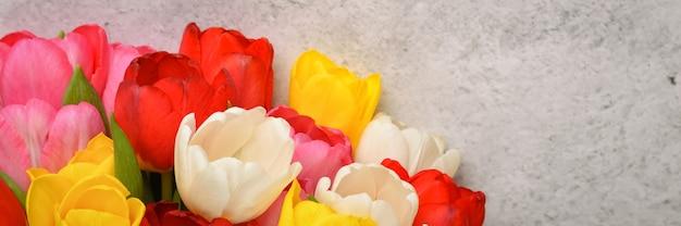 Bukiet świeżych, jasnych, wielokolorowych tulipanów na jasnoszarym tle.