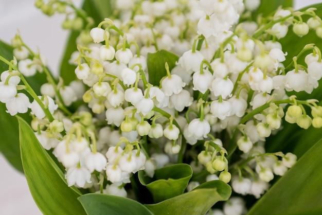 Bukiet świeżych kwiatów konwalii z bliska