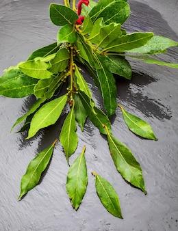 Bukiet świeżych liści laurowych na czarnej powierzchni