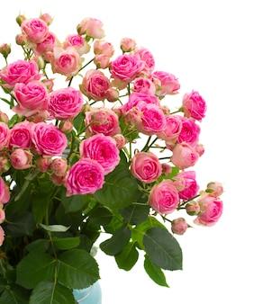 Bukiet świeżych róż z bliska na białym tle na białej przestrzeni