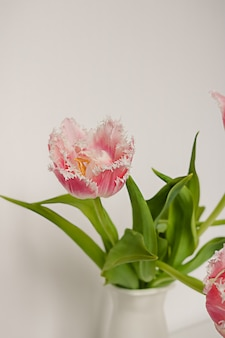 Bukiet świeżych różowych tulipanów papugi z zielonymi liśćmi w białym ceramicznym dzbanku stojącym na stole na tle papieru. kwiatowa kompozycja dekoracyjna.