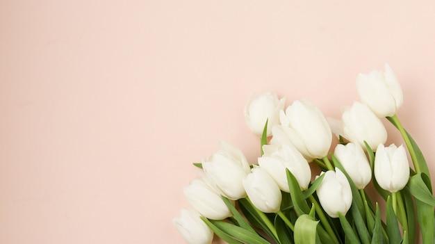 Bukiet świeżych wiosennych białych tulipanów leży