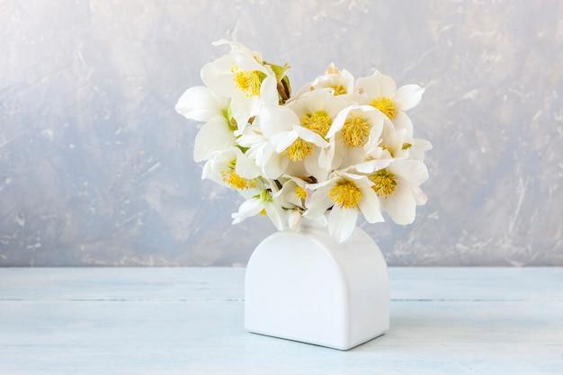 Bukiet świeżych wiosennych kwiatów ciemiernika w białym wazonie.