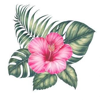 Bukiet tropikalnych liści monstera.