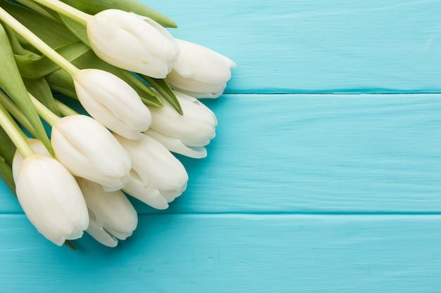 Bukiet tulipan kwitnie na drewnianym błękitnym tle