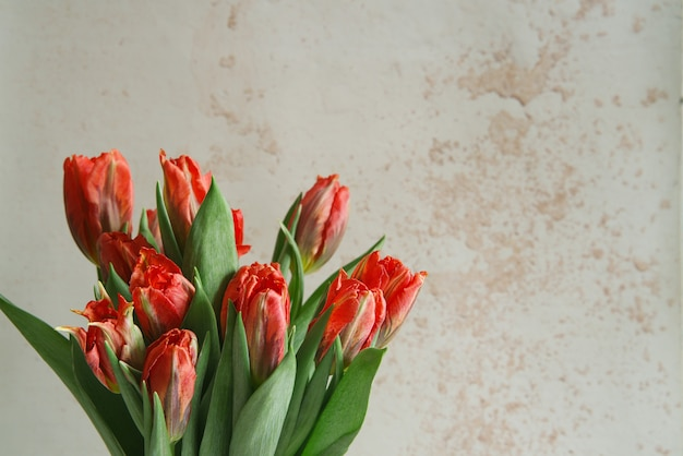 Bukiet tulipanów na betonowej ścianie z miejsca na kopię