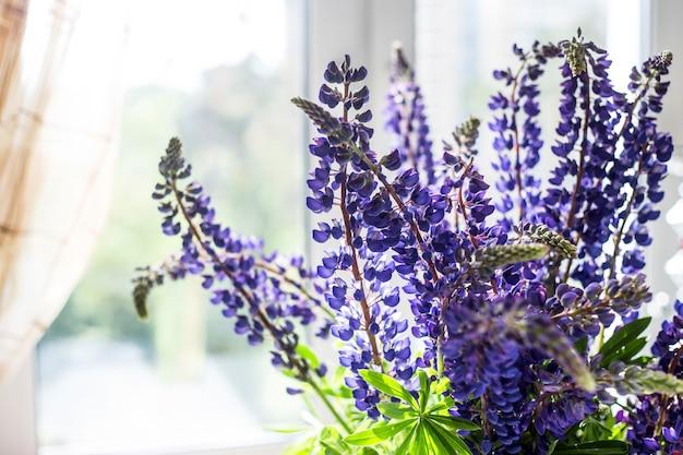 Bukiet wiosennych błękitnych łubinów we wnętrzu obok okna