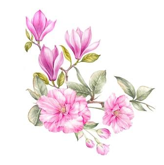 Bukiet z magnolii akwarela, na białym tle