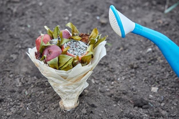 Bukiet zepsutych owoców i zwiędłych kwiatów posadzonych w ziemi jako symbol próby odnowienia ludzkich uczuć
