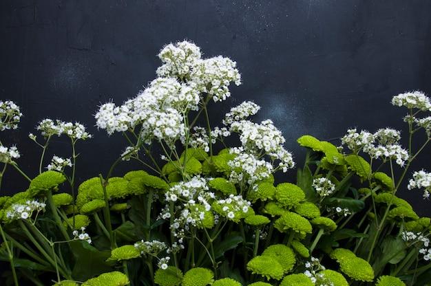 Bukiet zielonych kwiatów na szarym tle
