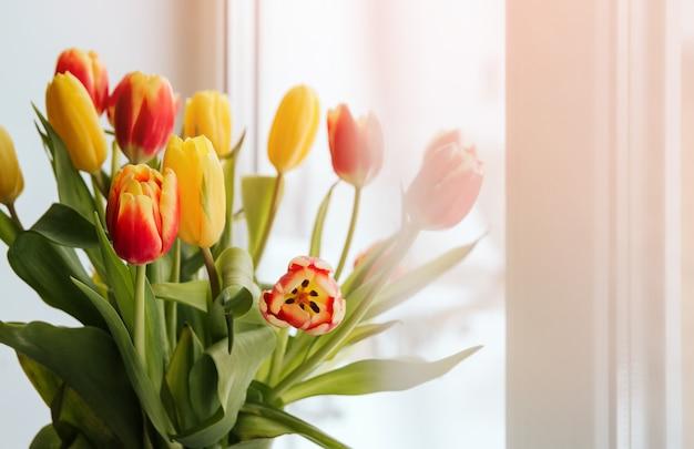 Bukiet żółci i czerwoni tulipany na okno kopii przestrzeni. tulipany na parapecie.
