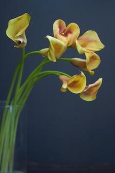Bukiet żółto-pomarańczowych lilii calla w szklanym wazonie