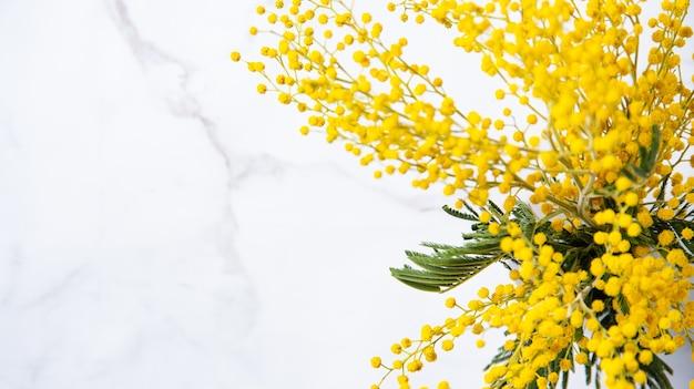 Bukiet żółtych kwiatów mimozy stoi w ceramicznym wazonie na marmurowym tle