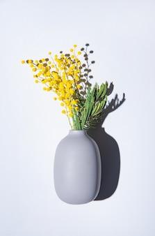 Bukiet żółtych kwiatów mimozy stoi w ceramicznym wazonie z cieniem na szarym tle