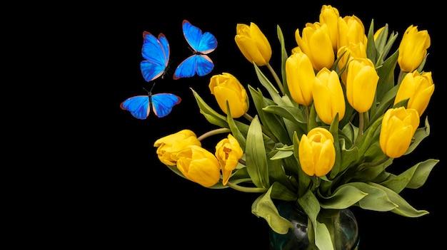 Bukiet żółtych tulipanów z niebieskimi motylami na białym tle na czarnym tle. piękne kwiaty z ćmami. izolować. zdjęcie wysokiej jakości