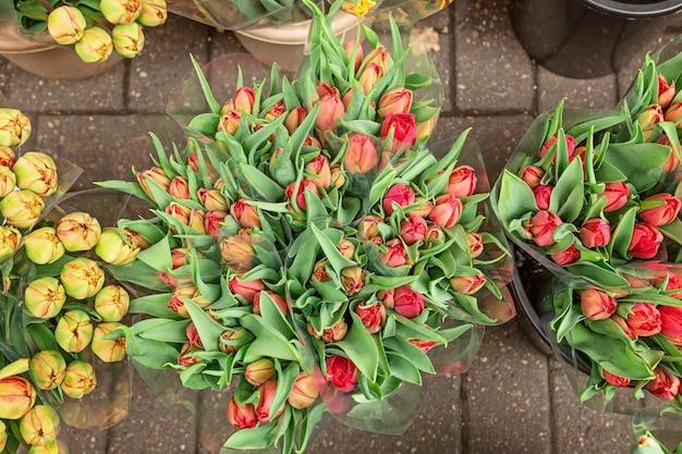 Bukiety pięknych kwiatów tulipanów na sprzedaż na targu kwiatowym