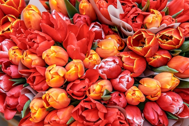 Bukiety z czerwonych, żółtych tulipanów, prezenty dla kobiet. tło tulipanów