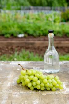 Butelka białego wina, szkło, młode winorośli i kiść winogron na zielonym tle wiosny. letni napój winogronowy