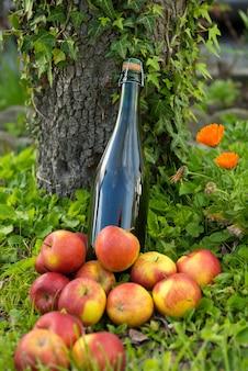 Butelka cydru normandzkiego z jabłkami w trawie,